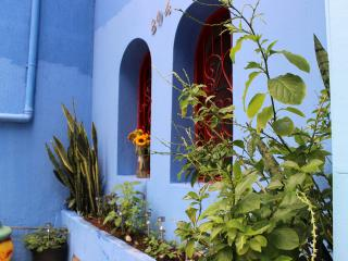 RedBlue Hostel - State of Alagoas vacation rentals