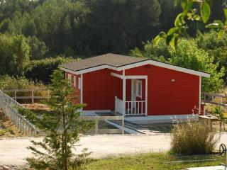 African Blue Lily Farm - Sintra vacation rentals