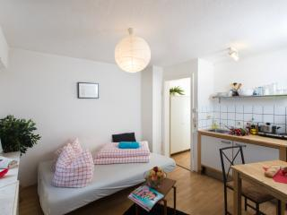 Mozartstr cosy downtown city apartment - Stuttgart vacation rentals