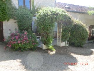 GITE LE CHEVREFEUILLE - Chinon vacation rentals