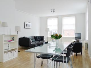 Luxury Apartment, City Center Delft - The Hague vacation rentals