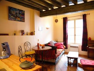 Beautiful apartment close to Place du Forum - Arles vacation rentals