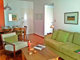 Great 2 Bedrooms / 2 Bath in Central Location - San Isidro vacation rentals