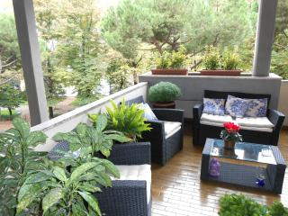 Roof garden riverside Central Location Lift - Florence vacation rentals
