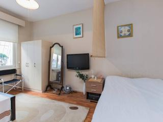 Multi-Cultured District in Downtown - Istanbul vacation rentals