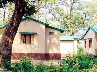 Valmikitiger Resort - Valmiki National Park vacation rentals