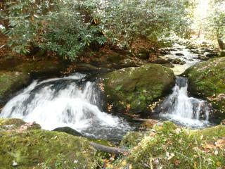 Rushing Waters Cabin-Romantic Waterfall Cabin - Gatlinburg vacation rentals