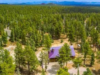Duck Creek Mt. Cabin sleeps 12 - Duck Creek Village vacation rentals