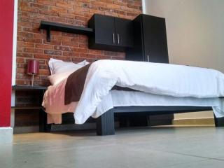 Lofts Business Class Apartments in celaya - Celaya vacation rentals