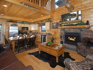 STARRY STARRY NIGHT -Luxurious 2/2 great location! - Pigeon Forge vacation rentals