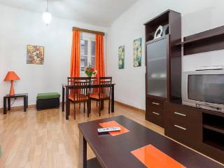 Beautiful and spacious Retiro! - Madrid vacation rentals