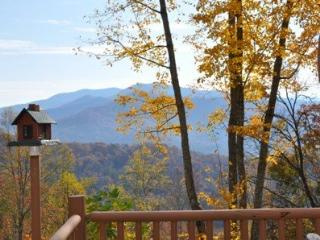 MooseHead Lodge - Mountainside Cabin with Sweeping Long Range Views Less than 15 Minutes from the Great Smoky Mountain Railroad - Bryson City vacation rentals