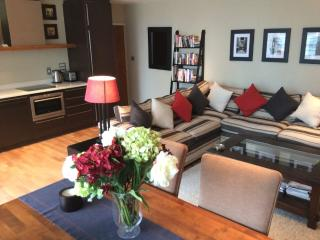 Westminster London Apartment with a View - London vacation rentals