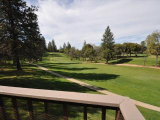 GolfCourseVw 1/3m>Pool&Club SmlDogOK 25m>Yosemite - Gold Country vacation rentals