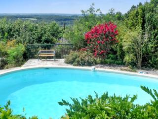 Country house in the Midi-Pyrenées, with large garden, 3 terraces and swimming pool - Bruniquel vacation rentals