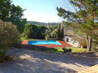RELAX AND ENJOY A DELIGHTFUL COUNTRY VILLA - Gouveia vacation rentals