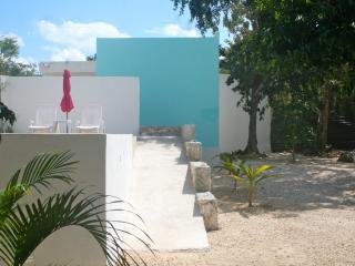 New AKUMAL Queen Jungle Studio with WIFI & AIRCO - Akumal vacation rentals