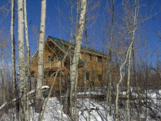 Hummel Lodge at Powderhorn - Mesa (Mesa County) vacation rentals