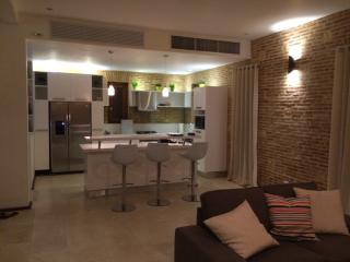 IN THE HEART OF ZONA COLONIALE - Santo Domingo vacation rentals