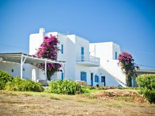 Veni Villa in Santa Maria - Paros vacation rentals