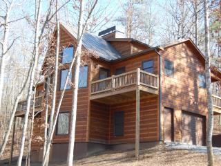 Buck Valley Lodge - Ellijay vacation rentals