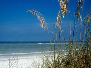 Upscale secluded beach, great sunsets! - Treasure Island vacation rentals