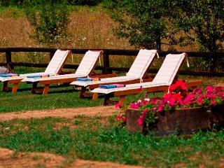 Etno garden 63 - Family Apartment - Smoljanac vacation rentals