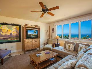 Luxury Wailea Beach Villa great price! From $725! - Wailea vacation rentals