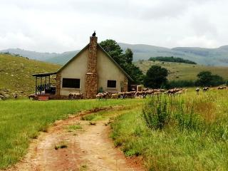 Highland Giants Estate - Mpumalanga vacation rentals