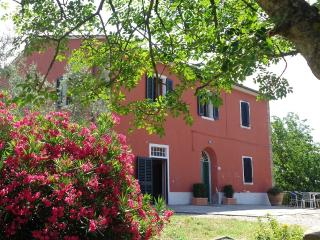 La casa di Marcello - Vinci vacation rentals