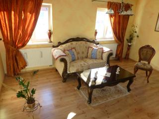 Art Apartment Harmony - Trnava vacation rentals