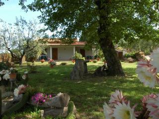 Agriturismo San Vincenzo - Sovana vacation rentals