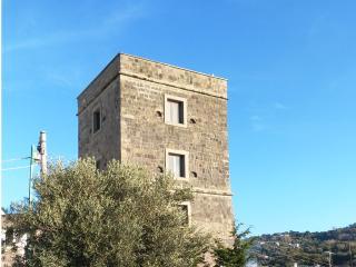 Astonishing Historical Tower overlooking Capri - Massa Lubrense vacation rentals