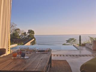 Villa 'Mc Queen' with breathtaking ocean view - Mal Pais vacation rentals