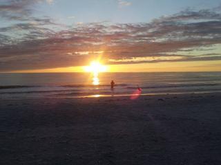 Belleview Gulf Condos - Indian Shores vacation rentals