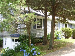 QUIET COLORFUL CONVENIENT - Orleans vacation rentals