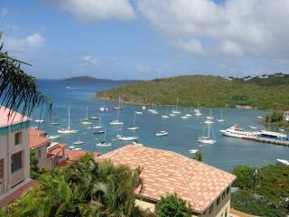 WOW !  5 MIN. WALK TO TOWN- GREAT VIEW OF BAY- 2BR - Cruz Bay vacation rentals