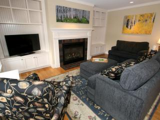 Meadowview #11 - Stowe Area vacation rentals