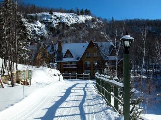Mont Tremblant 2 Bedroom-2 Bathroom House (Le Plateau | 226-1) - Mont Tremblant vacation rentals