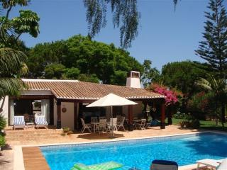 Villa Orquida - - Northern Portugal vacation rentals