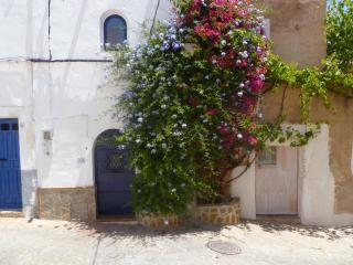 A unique Spanish cottage - Pechina vacation rentals