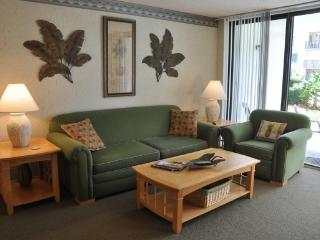 Beach Condo Rental 113 - Florida Central Atlantic Coast vacation rentals