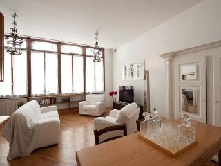 Gli Assassini - Luxury apartment on the Canal Grande - Veneto - Venice vacation rentals