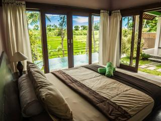 True Bali Experience in Lelki Villa - Canggu vacation rentals