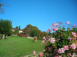 Corella Apartment - Florence vacation rentals