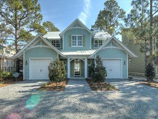 Transcendence by the Sea - 5 Star Luxury w/ Heated Pool in Seagrove Beach! - Santa Rosa Beach vacation rentals