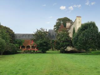 Gorgeous 15th century castle near Vierzon, with 9 bedrooms and set in a huge forest - Saint-Pierre-de-Jards vacation rentals