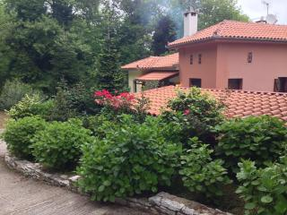 A traditional House in Pelion - Thessaly vacation rentals