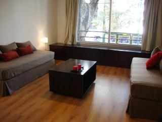 Buenos Aires - Excellent Vacation Studio for 2! - Buenos Aires vacation rentals
