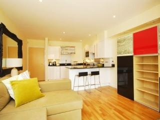 Smart and modern London Vacation Rental home - London vacation rentals